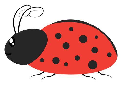 Ladybug in profile, illustration, vector on white background