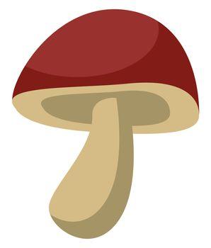 Forest mushroom, illustration, vector on white background