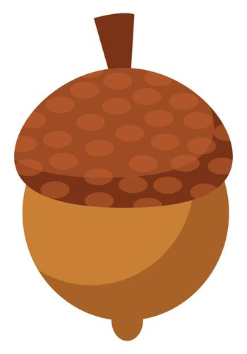 Small nut, illustration, vector on white background