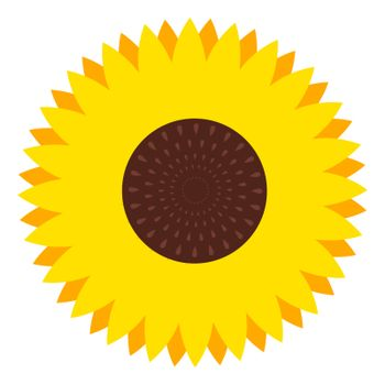 Sunflower flower, illustration, vector on white background