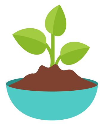 Plant in pot, illustration, vector on white background