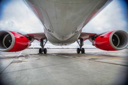 Low angle view of airplane in airport