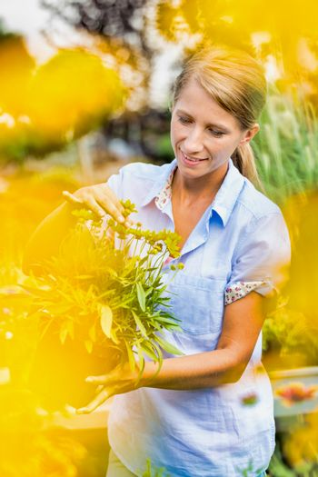 Portrait of woman buyer looking at flower on pot in shop