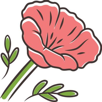 California poppy red color icon. Papaver rhoeas. Corn rose blooming wildflower. Herbaceous plants. Field common poppy. Summer blossom. Isolated vector illustration