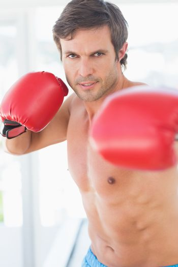 Portrait of a determined male boxer