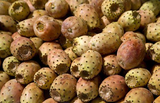 Fruits of Opuntia ficus-indica , Cactus fruits.