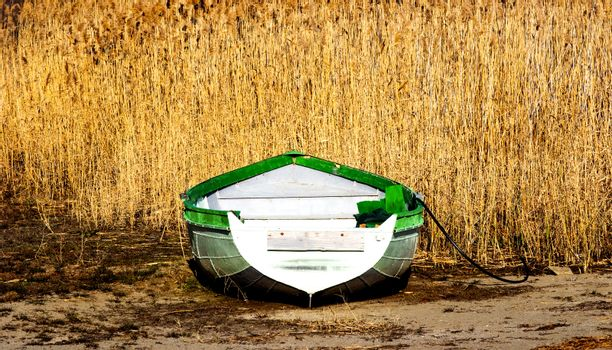 old fisherman boat and reed plant image