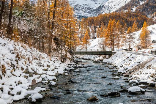 Landscape of rocky stream alongside in pine woods covered by snow in winter, Zermatt, Switzerland.