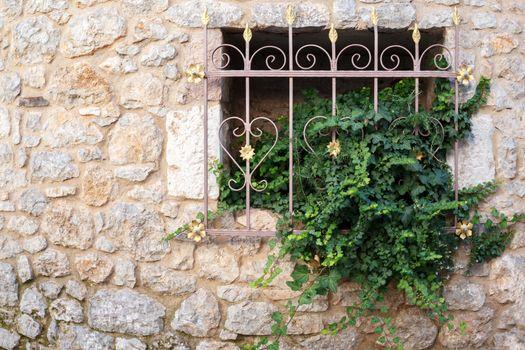 Ornamental window grill with plants