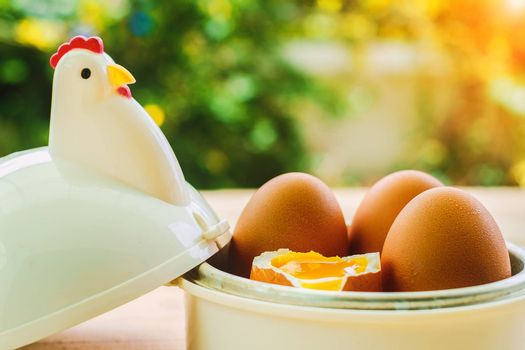 Eggs in egg cup for breakfast with blurred green background