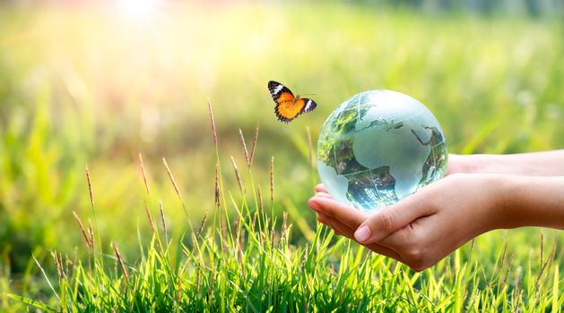 Concept Save the world save environment The world is in the grass of the green bokeh background