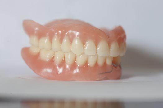 Medical denture on white table
