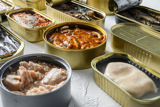 Cans with different preserve of fish and conserve seafood, opened and closed cans with Saury, mackerel, sprats, sardines, pilchard, squid, tuna, over white sbackground side view new widw angle