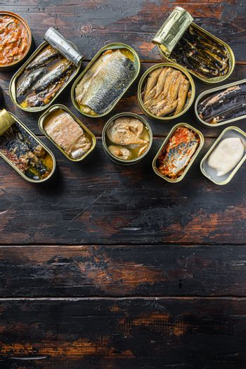 opened cans conserve with Saury, mackerel, sprats, sardines, pilchard, squid, tuna over wood table top view vertical space for text