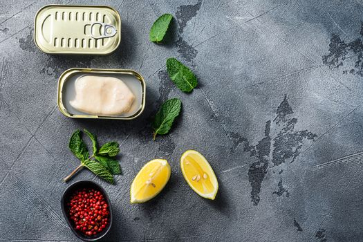 canned squid, set of opened cans closed conserve with fresh leaves and lemon with rose pepper over grey background top view spacr for text
