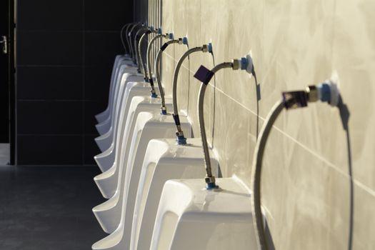 Public toilet in public building. Interior of public restroom fo