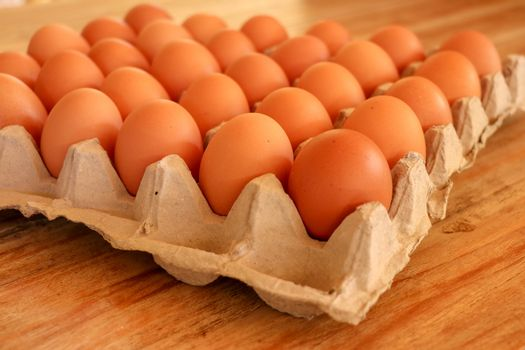 Brown fresh eggs in paper tray on white background,whole round raw brown homemade chicken eggs in a paper tray, selective focus, close up.Brown chicken in paper tray.