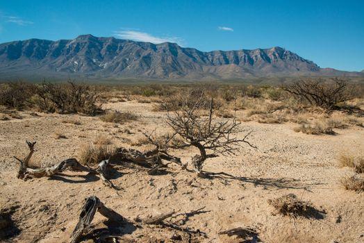 New Mexico desert landscape, gypsum crystals around