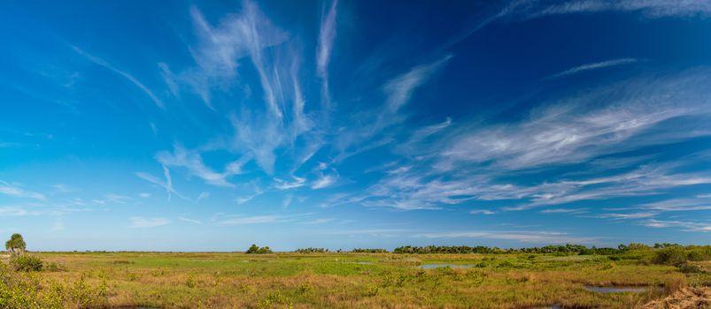 Canaveral National Seashore landscape