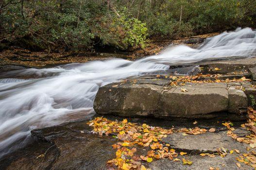 North Carolina Stream