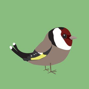 Cute goldfinch