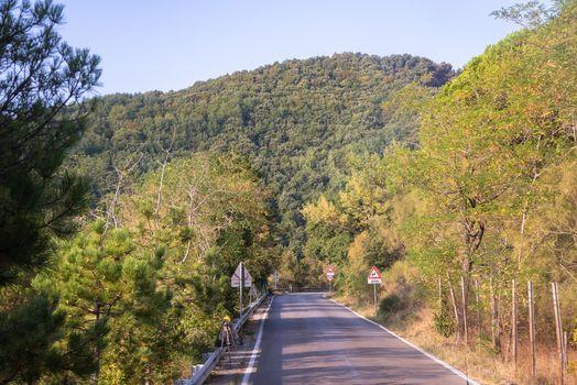Road to the Mount Vesuvius