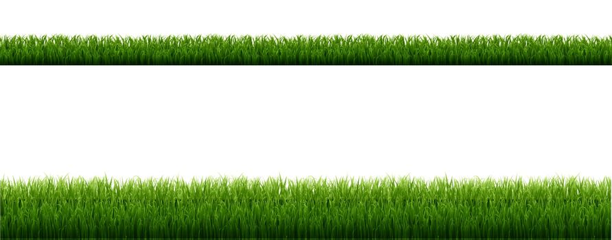 Green Grass Border With Isolated White Background, Vector Illustration
