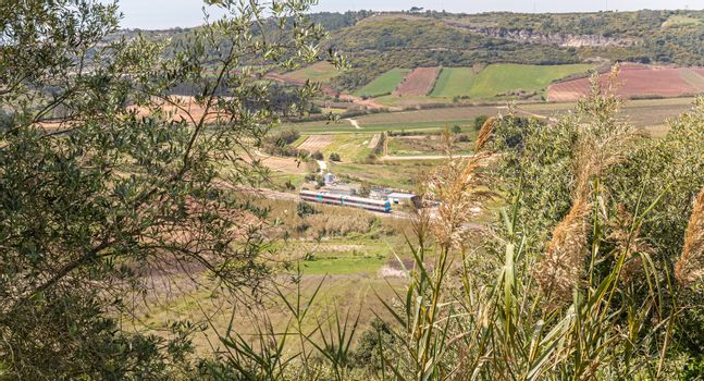 public train passing through the Portuguese countryside on a spring day
