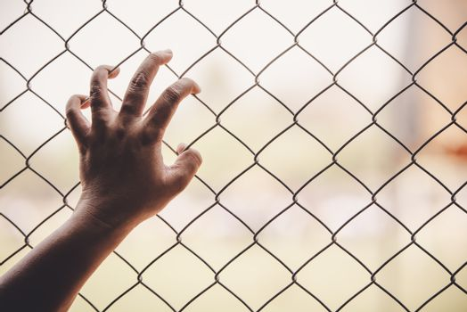 Hands and Steel Cage