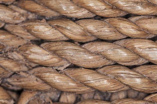bamboo rope macro