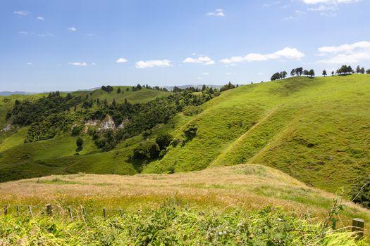 An image of a beautiful landscape near Matamata New Zealand
