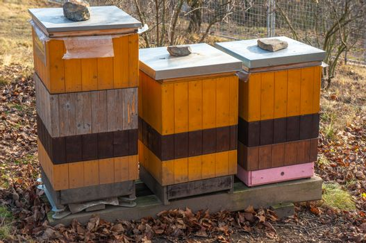 Three vibrant yellow, orange and pink beehives standing among dry fall leaves. Shot in the Botanical Gardens, Troja, Czech Republic on a bright day. Soft light and orange tones for an autumn concept