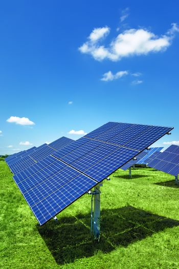 An image of a typical solar plant outdoors