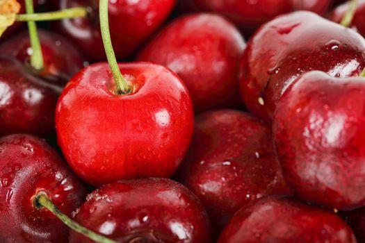 macro of beautiful fresh cherries