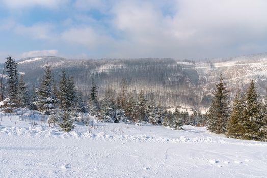 Winter landscape of Beskid Mountains, Szczyrk, Poland