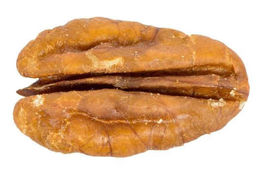 Close-up of pecan nut isolated on white background with clipping path