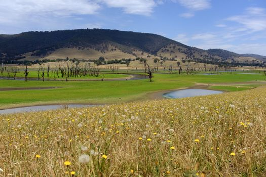 Scenic lake surrounded by hill on the way of Tallangatta in Victoria, Australia