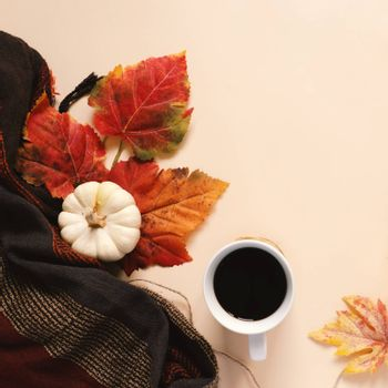 Flatl lay style of autumn and thanksgiving with pumpkin, coffee, scarf and maple leaf, copy space