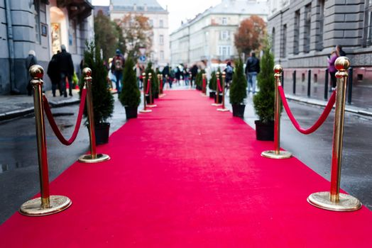 Event party.Red carpet between rope barriers in the success party.