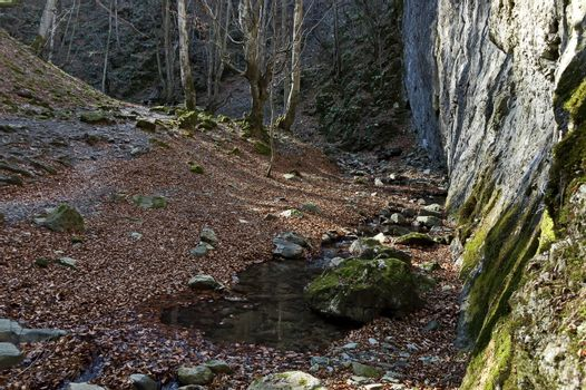 Autumn walk through the maze of Teteven Balkan with high peaks and mossy steep cliff, Stara Planina, Bulgaria