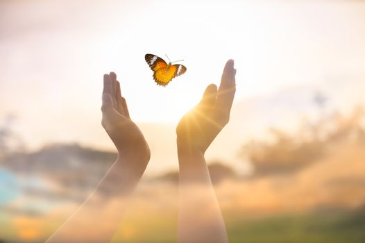 The girl frees the butterfly from  moment Concept of freedom