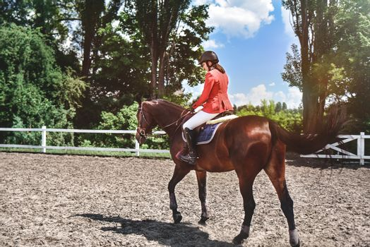 Young pretty jockey girl preparing horse for ride. girl riding a horse