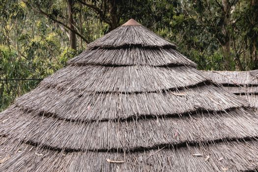 detail of a traditional thatched roof of ancient portugal