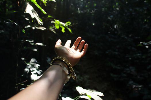 Harmony between human and nature