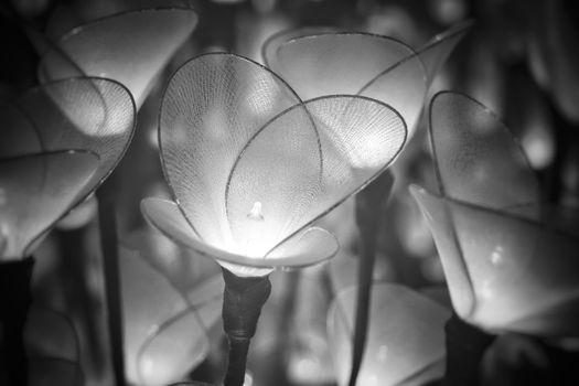 Ethereal Fairy Light