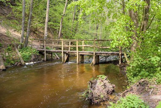 View of wooden bridge on Tanew river in nature reserve Nad Tanwia in eastern Poland