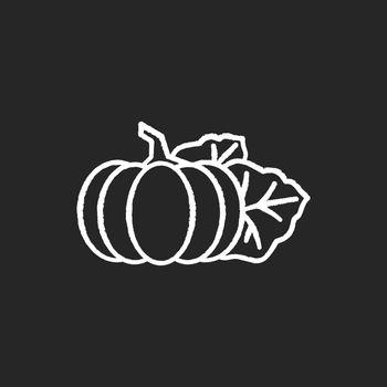 Pumpkin chalk white icon on black background
