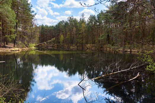 Spring view of wild Zabnik river in the nature reserve in Ciezkowice, Jaworzno, Poland