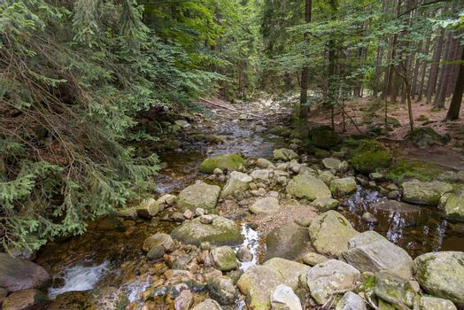 Big rocks in the Mumlava river near Harrachov in Giant Mountains in Czech Republic