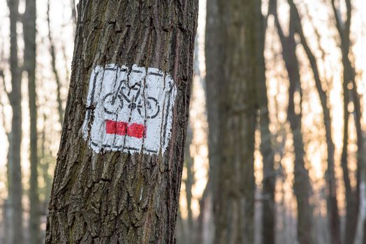 Red bicycle trail sign painted on the tree